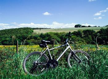 Biking holidays and cyclist friendly hotels