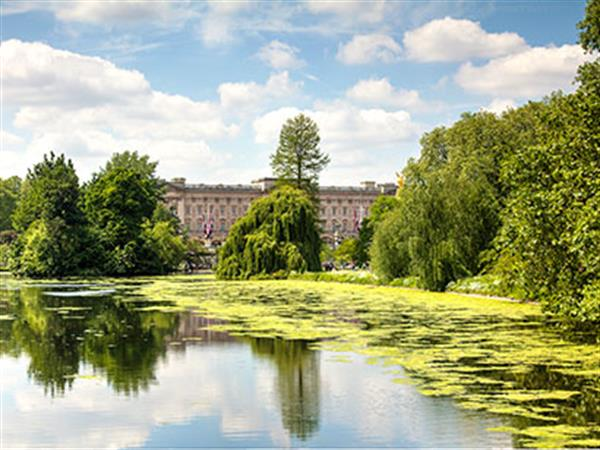 Buckingham palace behind beautiful green gardens and pond