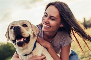 pet friendly hotel packages listing